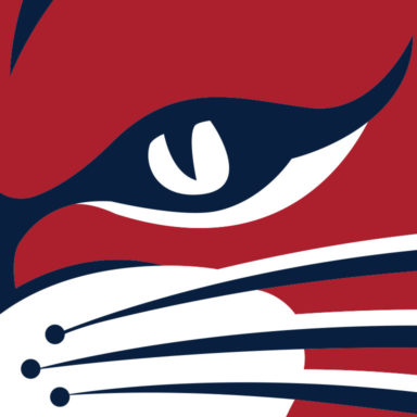 Detail of Wildcat sports branding mascot/icon created for the Winsor School's athletic teams